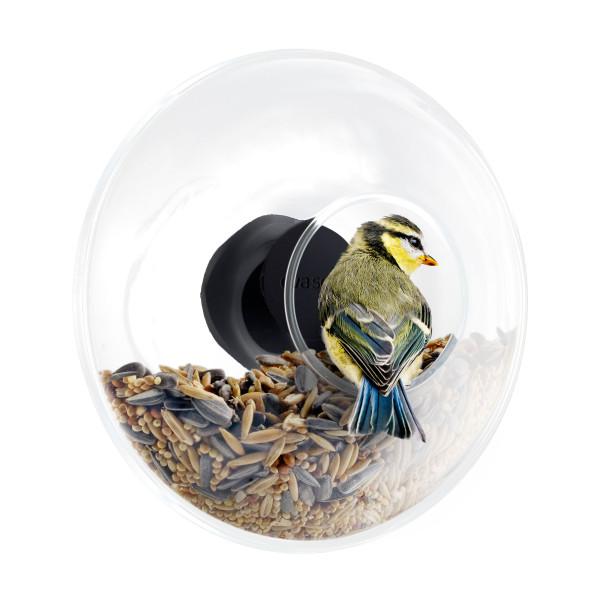 Eva Solo Vogel Futterstelle - Vogelfutterring aus Glas für Fensterscheibe 14,5 cm - Glas Vogel-Futterhaus mit Vogel