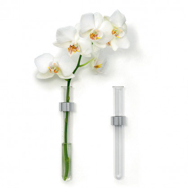 Design Wandvase ZYLINDER von FAIRWERK - Glaszylinder Vase - mit und ohne Blume