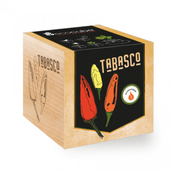 Chili Tabasco ecocube, Pflanze im Holzwürfel