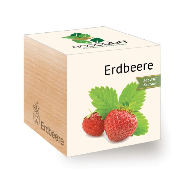Erdbeere zum selber Züchten - ecocube Holzwürfel - Feel Green