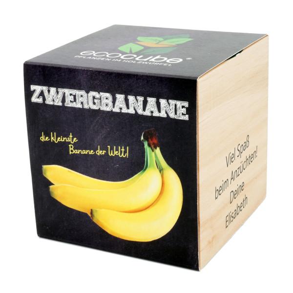 Zwergbanane zum selber Züchten im Holzwürfel mit Gravur von Feel Green. ecocube Pflanzwürfel Banane mit persönlichem Gravurtext. Originelles Geschenk!