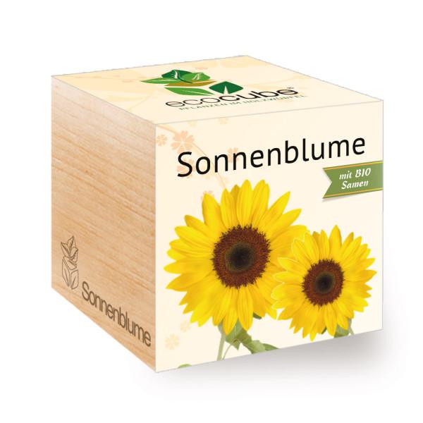 Sonnenblume Pflanzwürfel ecocube von Feel Green. Sonnenblume im Holzwürfel. Blume im Pflanzwürfel aus Holz - Sunflower.