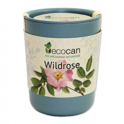 Wildrose aus der Ökodose - ecocan - Feel Green