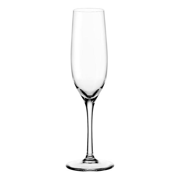 Stilvolles Sektglas CIAO+ von LEONARDO. Exklusives Stielglas 190 ml für Champagner, Sekt, Aperitifs oder Schaumwein.