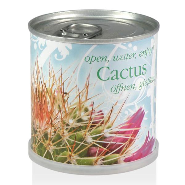 Blumendose Kaktus von Mac Flowers (Extragoods) - Kakteen Käuterdose - Cactus Flower