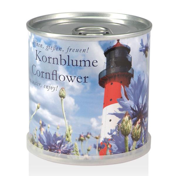 Blumendose - Kornblume