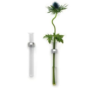 Design Wandvase DIAMANT von FAIRWERK - Glaszylinder Vase - mit und ohne Blume