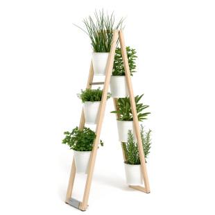 Dekorative Pflanzleiter von FAIRWERK. Design Blumentreppe aus Holz mit weißen Blumentöpfen.