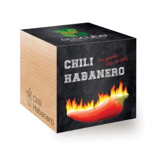 Chili Habanero ecocube - Pflanze im Holzwürfel - Feel Green.