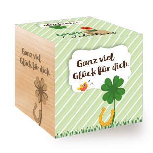 Ganz viel Glück für dich zum selber Züchten! Der Glücksklee aus dem ecocube Holzwürfel von Feel Green.