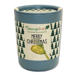 MERRY CHRISTMAS Glückwunschbohne / Blumendose ecobean von Feel Green.