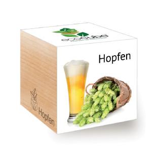 Hopfen zum selber Züchten - im ecocube Holzblock von Feel Green.