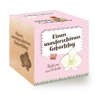 Blumiger Geburtstagsgruß! Orchideenbaum / Blume zum selber Züchten aus dem Pflanzwürfel von Feel Green. Mit Botschaft - Einen schönen Geburtstag.