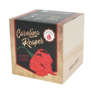 Pflanzwürfel Carolina Reaper mit persönlicher Gravur
