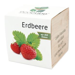 Pflanzwürfel Erdbeere mit persönlicher Gravur