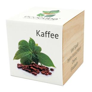 Für Kaffeetrinker! Der Kaffeestrauch zum selber Züchten im gravierten Holzwürfel von Feel Green. ecocube Pflanzwürfel Kaffee mit persönlicher Gravur. Originelles Kaffeegeschenk!