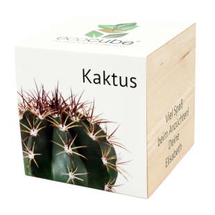 Pflanzwürfel Kaktus mit persönlicher Gravur