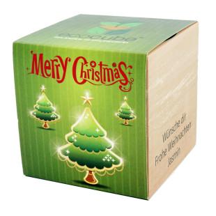 Pflanzwürfel Tannenbaum Merry Christmas 2 mit persönlicher Gravur