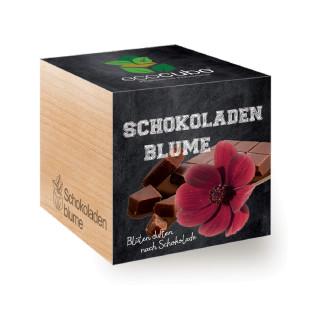 ecocube Holzwürfel mit Samen - Schokoladenblume - Feel Green