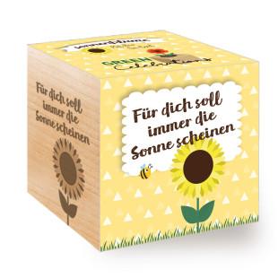 Sonnenblume zum selber Züchten! Die Sonnenblume aus dem ecocube Holzwürfel von Feel Green. Mit Schriftzug-Branding - Für dich soll immer die Sonne scheinen.