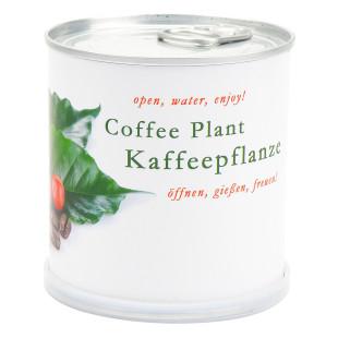 Blumendose Kaffee von Mac Flowers (Extragoods) - Kaffeepflanze Käuterdose