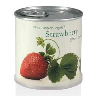Erdbeeren aus der Dose