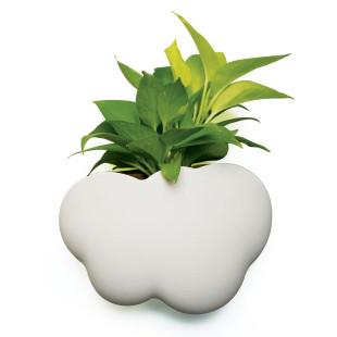 Cloud Pot Container von Qualy Design. Weißer Behälter im Wolken-Design für Stifte, Duschgel oder Pflanzen.