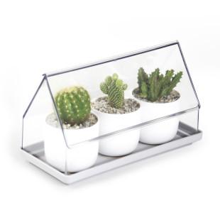Micro Greenhouse - Mini Gewächshaus / Anzuchthaus von Qualy Design.