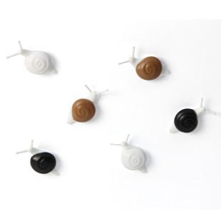 Schnecken Magnete SNAIL 6er-Set von Qualy Design