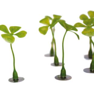 Glücksmagnet Kleeblatt von Raumgestalt - kleine Kunststoff-Kleeblätter mit Magnet auf Metallplättchen - Freisteller