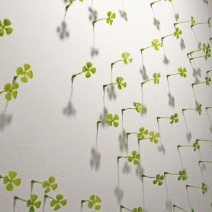 Glückswand Kleeblätter von Raumgestalt - kleine Kunststoff-Kleeblätter auf kleinen Nägeln an der Wand befestigt.