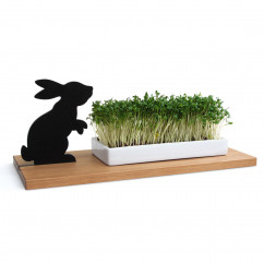 Kresseschale smart n green Hase